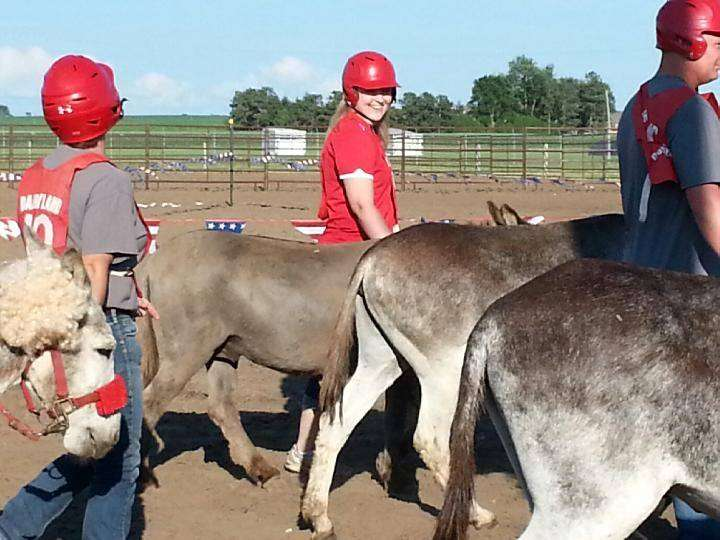 Donkey Race 1