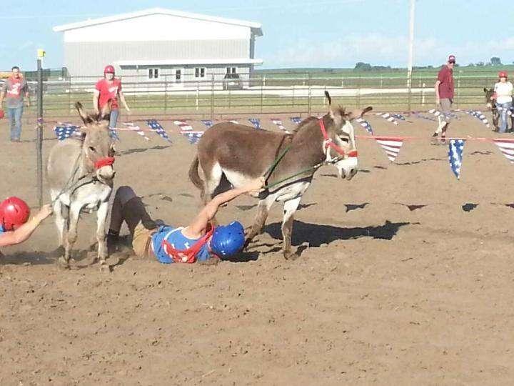 Donkey Race 3