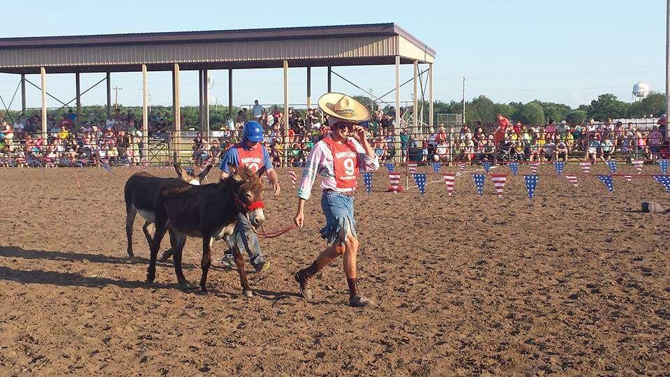 Donkey Race 7