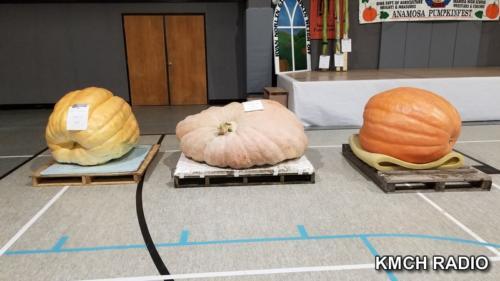 Pumpkinfest 15